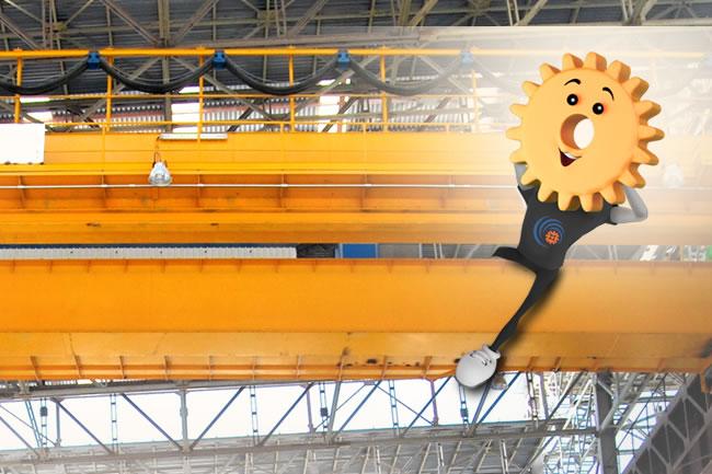elecon Crane Industry industry