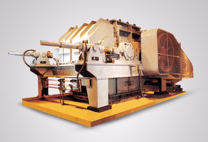 elecon  Double Roll Crusher